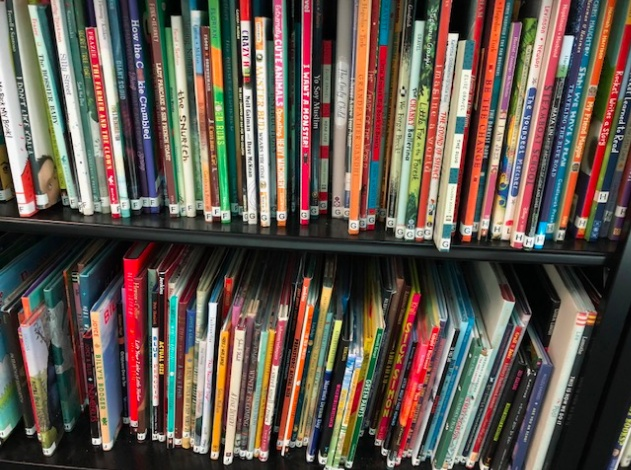 Using Picture Books With Older Students – A How-to Guide – Pernille Ripp